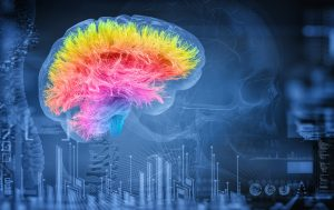 Trauma to the cerebral cortex can lead to various disorders, including Apraxia.